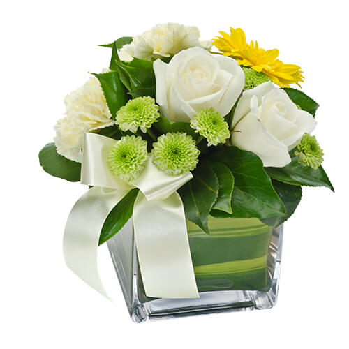 Best Sellers in Townsville Flowers Townsville